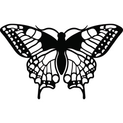 Night butterfly carved from wood plywood L 420X 257 mm LEOPARTID
